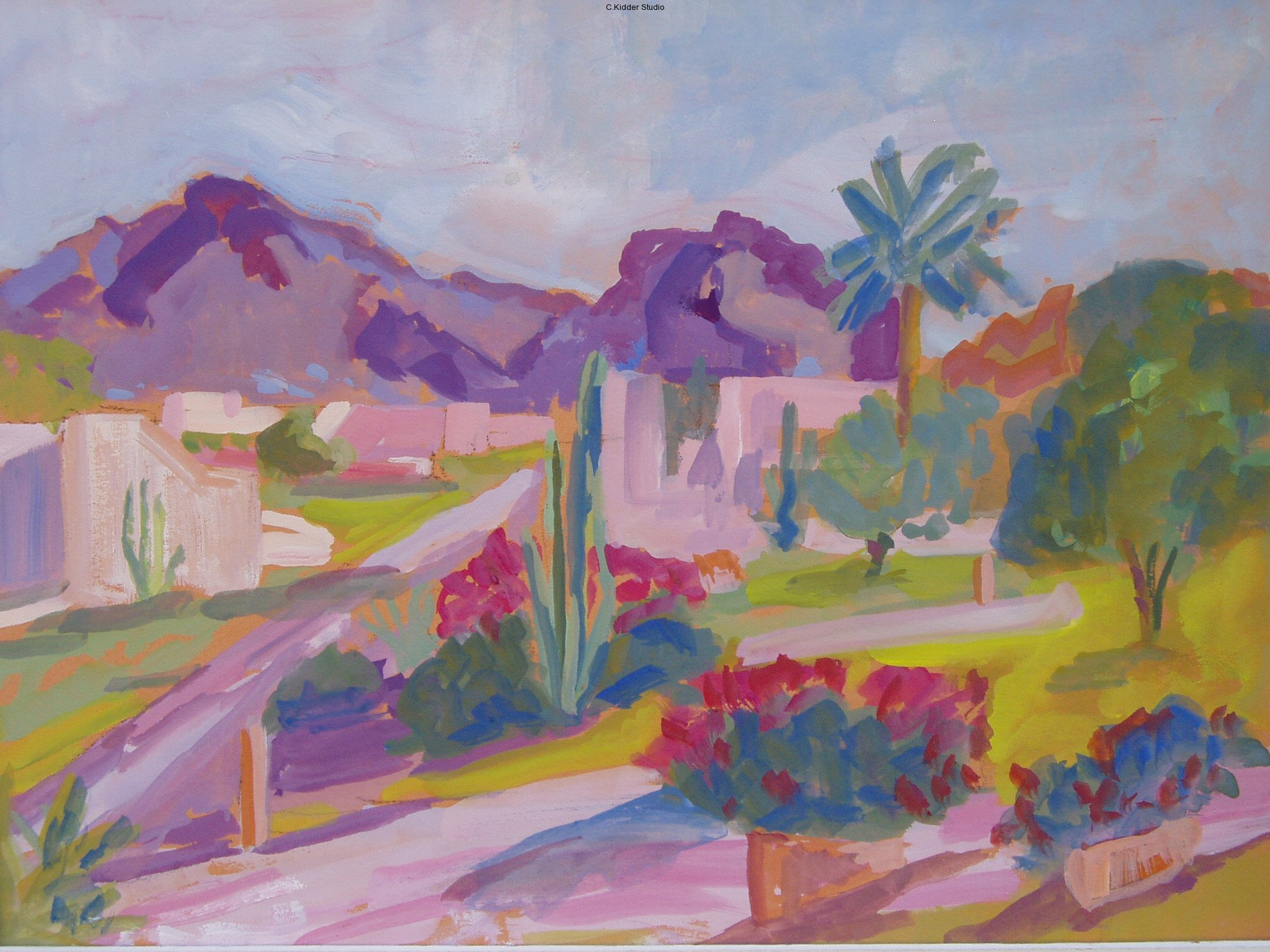 Arizona Gouache