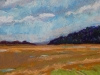 Miles of Marsh...oil Pastel